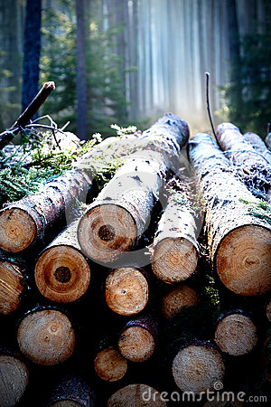 Free Pile Of Wood Stock Image - 91368011