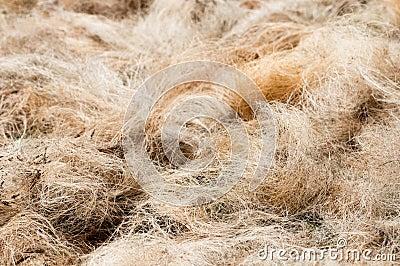 Pile of processed copra fibre