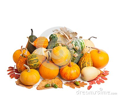 Pile of pumpkins with autumn foliage on white backgroun