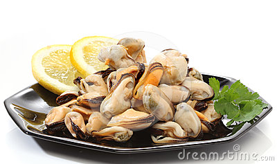 Pile of raw mussels