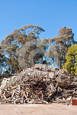 Pile of raw timber to recycle at waste depot