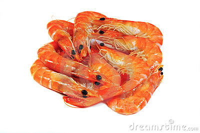 Pile of royal shrimp