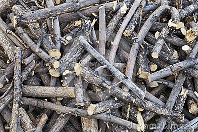 Pile of sticks