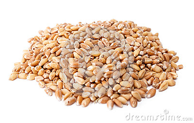 Pile of wheat berries