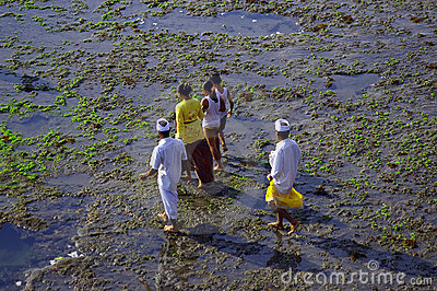 Pilgrims walking to the sea Editorial Image