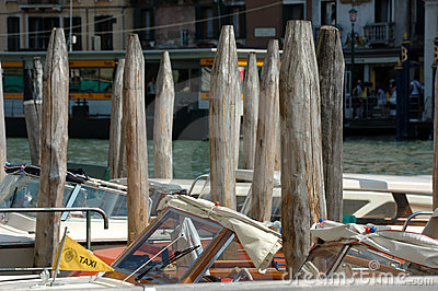 Pilings in Venice. Frugality