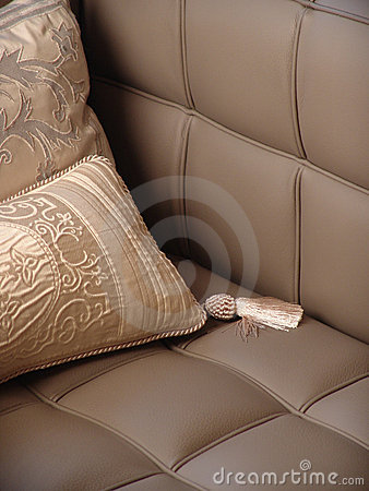Pillow on the couch