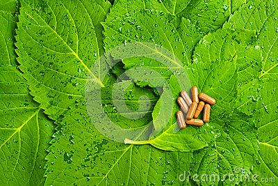 Pills over green leaves. Homeopathic medicine