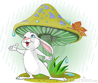 Pilz-Kaninchen
