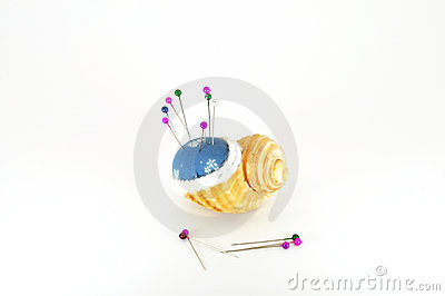 Pin cushion in shell