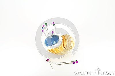 Pin cushion in shell