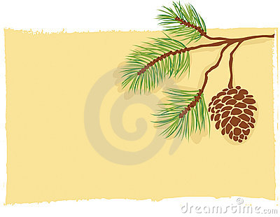 Pine branch card vector