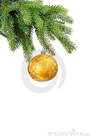 Pine branches and christmas ball