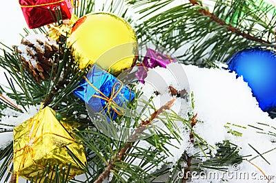 Pine Christmas ball