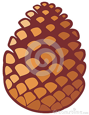 Free Pine Cone Royalty Free Stock Photography - 33089837