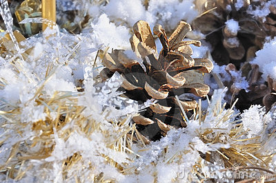 Pine cone in snow with golden wreath