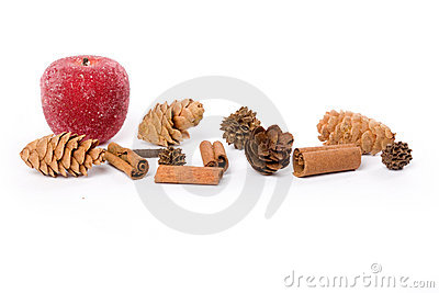 Pine Cone and sugared Fruit