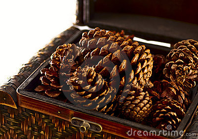Pine Cones Home Decoration
