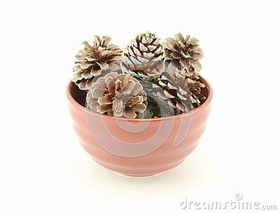 Pine Cones in Brown Bowl