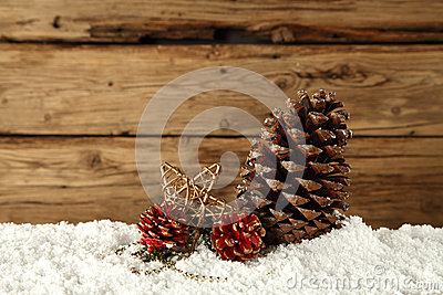 Pine cones on snow