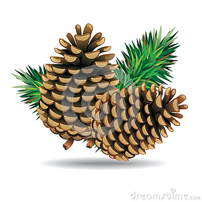 Free Pine Cones With Pine Needles. Stock Photography - 38954522
