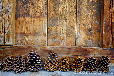 Pine cones and wood