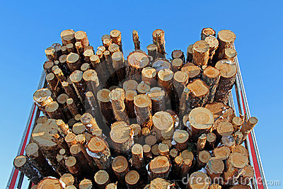 Pine Logs On Logging Semi Trailer Royalty Free Stock Images - Image: 18580899