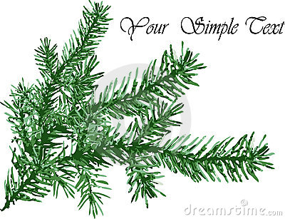 Pine needles background