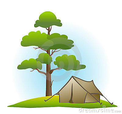 Pine and tent