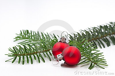 Pine tree branch with christmas balls