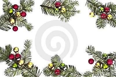 Pine tree  and christmas balls