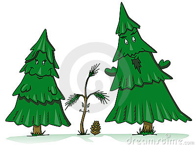 Pine tree family cartoon