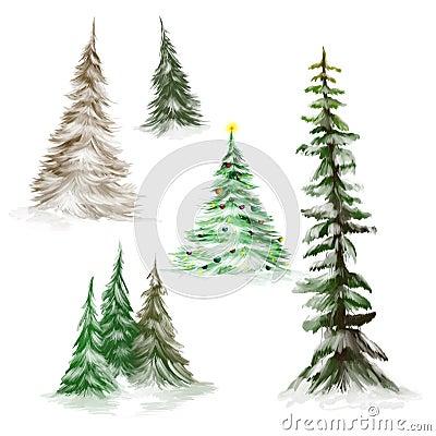 Pine trees and Christmas trees