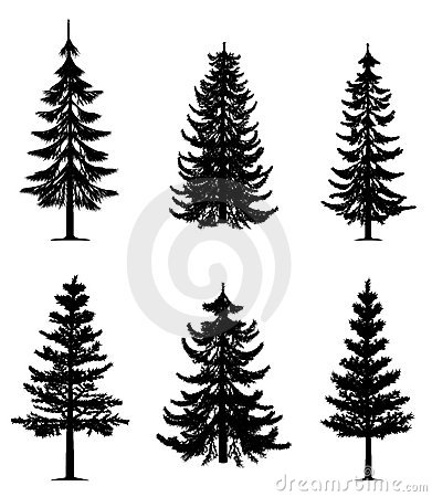 Pine trees collection