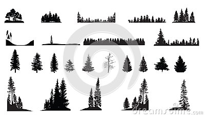 Pine Trees Vector Illustration