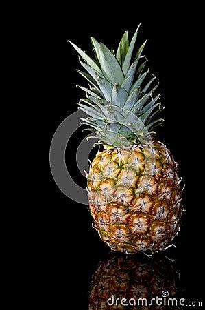 Pineapple #1