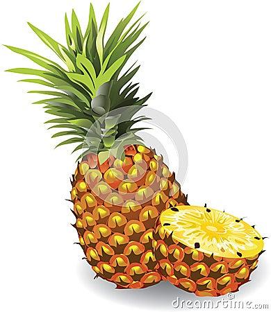 Pineapple Stock Illustrations – 10,109 Pineapple Stock ...