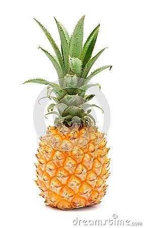 Free Pineapple Stock Photo - 13118520