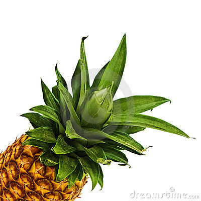 Free Pineapple Stock Photography - 13926782