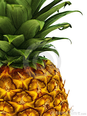 Free Pineapple Royalty Free Stock Photos - 13926828