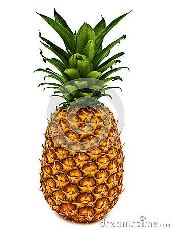 Free Pineapple Royalty Free Stock Photos - 13926868