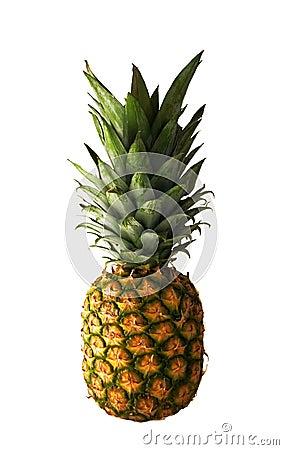 Free Pineapple Stock Photo - 175320