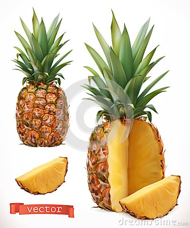 Free Pineapple. Fresh Fruit 3d Vector Icon Royalty Free Stock Image - 121804956
