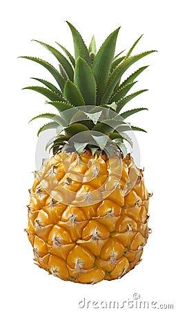 Free Pineapple Fruit Isolated On White Background Royalty Free Stock Image - 86026436