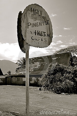 Free Pineapple Hut, Old Hawaii Stock Photography - 9453202