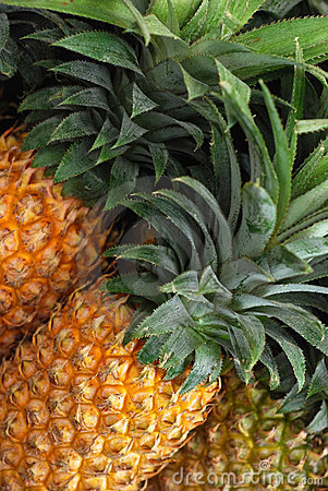 Free Pineapple In Market Stock Images - 20062894