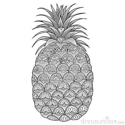Pineapple Line Art Design Stock Vector Image 66826453