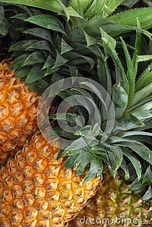 Pineapple in market