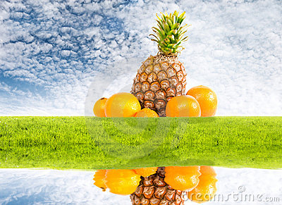 Pineapple and oranges on nature idyllic background