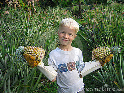 Pineapples anyone?